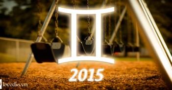 SoT 2015