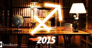 Năm 2015 của Nhân Mã