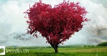Có thể nào làm tan chảy trái tim Bọ Cạp (1)